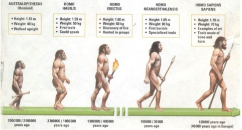 Evolution And Our Food